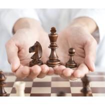 Красивые подарочные шахматы из натурального дерева турнирные №3