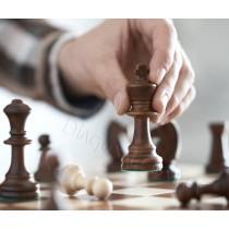 Шахматы классические Madon C-96 Турнирные №6