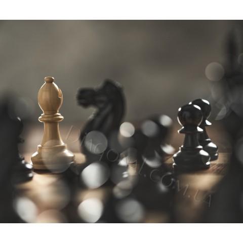 Шахматный набор люкс. Цельная деревянная доска 54x54 см шахматные фигуры и коробка для хранения