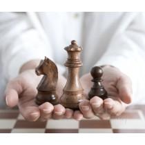 Фигуры шахматные Немецкий Стаунтон №6 коричневые