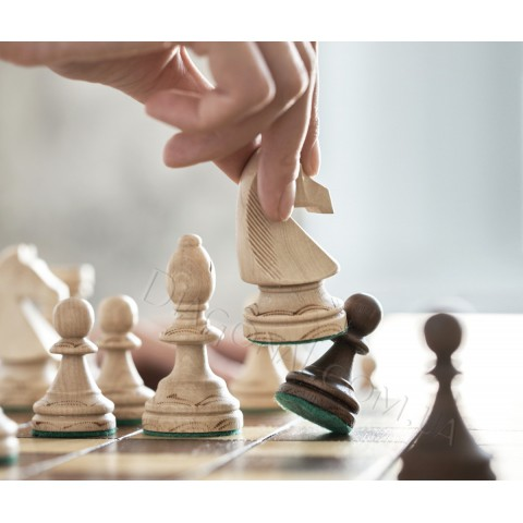 Шахматы подарочные деревянные Посол (Ambassador) 54 см