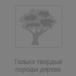 твердые породы дерева